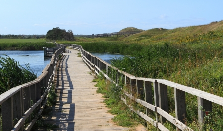 edward: A wooden bridge over a marsh in the Cavendish Dunelands, Prince Edward Island National Park.