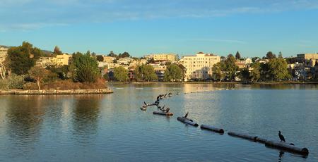 jezior: Patrząc na wschód w poprzek jeziora Merritt, Oakland, Kalifornia.