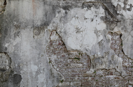 reveals: The crumbling plaster reveals an old brick wall underneath.