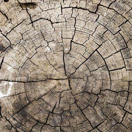 muebles de madera: Madera Foto de archivo