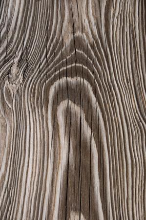 fondo legno: Sfondo di legno