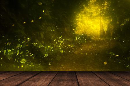 firefly: firefly Stock Photo