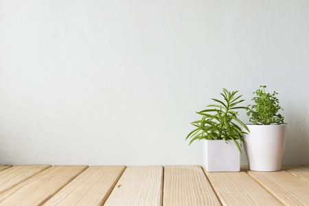 Binnenplant op houten lijst en witte muur Stockfoto - 55512677