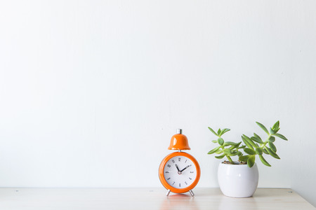 wall light: flowers and alarm clock on a white wall shelf Stock Photo