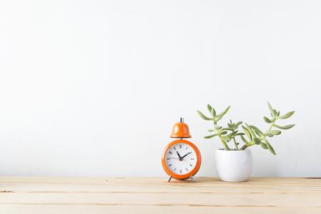 shelf: Plants and alarm clock on a white wall shelf