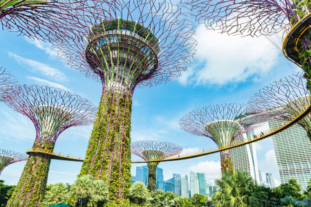 Singapore City, Singapore - February 10, 2017: Time lapse of tourist on Supertree grove in Gardens by the Bay in Singapore under moving clouds in blue sky