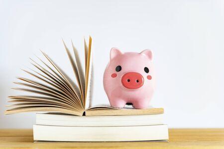 Piggy bank on books on white background