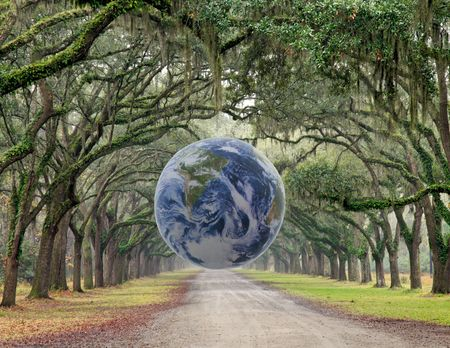 dirt: A row of oak trees with the NASA Earth ball taken in Charleston, South Carolina. Stock Photo