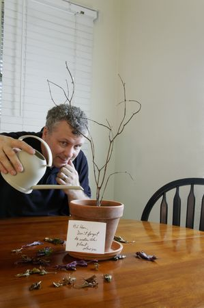 reminding: A man trying in vain to water his wifes dead plant after he forgot to water the plant. Stock Photo