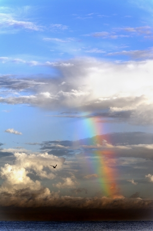 Brightly color rainbow coming from a cloud at the ocean.