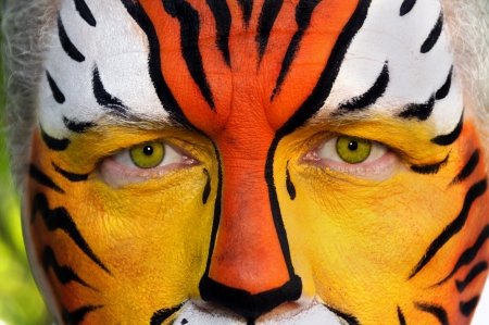 Closeup of a man's face painted like a tiger. Stock Photo - 16115263