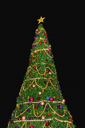 Large green Christmas tree with decorations and star topping against a black .