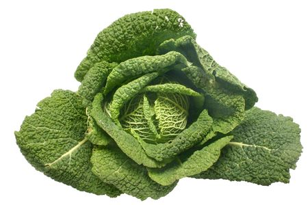 savoy: A Savoy cabbage Stock Photo