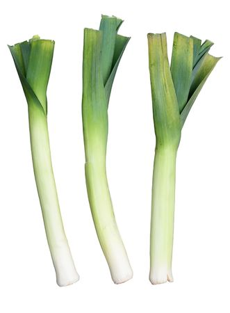 Three Welsh green leeks, isolated on a white background.