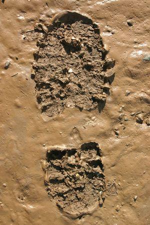 Walker�s Boot print in wet mud Stock Photo