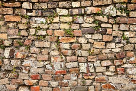 varied: A mixed stone and bricks colorful wall.