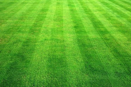 Bowling green grass background. Stock Photo