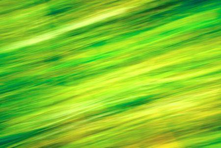Natural blur green background. photo