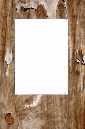 tatty: Laminated blank white paper stuck on an old weathered tatty outside noticeboard. Stock Photo