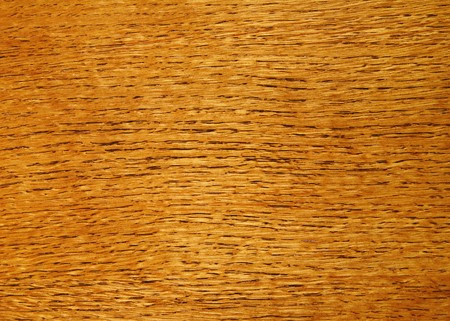 polished wood: Varnished wood grain close up texture background.