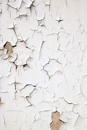 flaking: Old flaky white paint peeling off a wall.