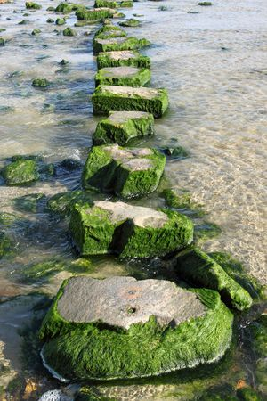stepping: Large stepping stones across a stream.