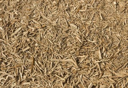 Lots of fresh wood chippings close up. photo