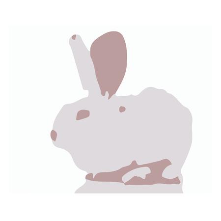 Vector illustration of a white rabbit on white background.
