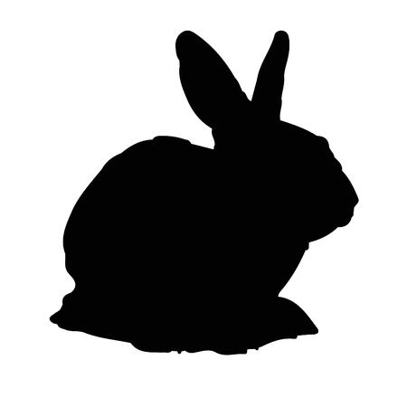 Vector illustration of a black rabbit on white background.