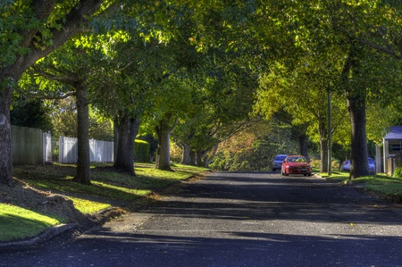 suburbs: Pituresque tree lined suburban street Stock Photo