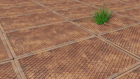 sprouted: area, paved with slabs, through one of them sprouted grass Stock Photo