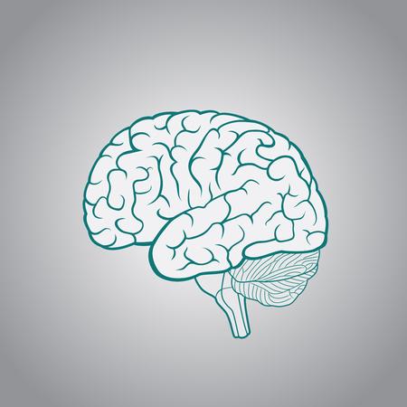 어두운 파란색 배경에 인간의 두뇌의 도식 그림