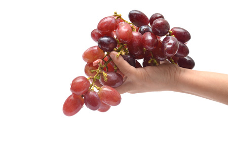 Hand holding red grape  on white  photo