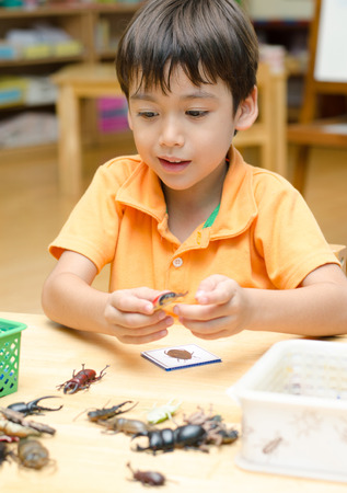 Little boy learning about insect in class photo