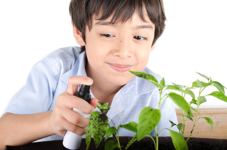 spaying: Little boy working with spaying for plant gardening Stock Photo