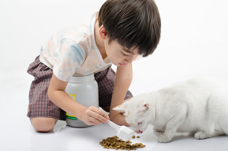Little boy giving food for cat Stok Fotoğraf