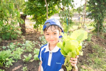 Jongetje werken aanplant in de boerderij buiten