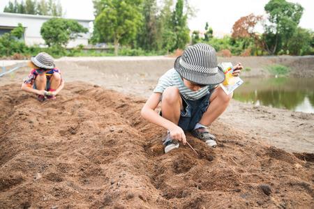 jardineros: Poco plantación trabajando muchacho en el exterior granja