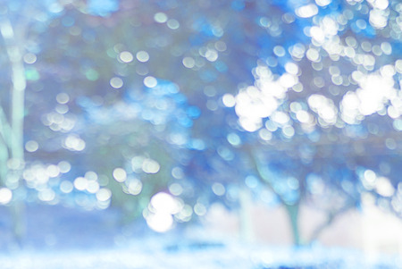 bokeh background: Bokeh background light from tree