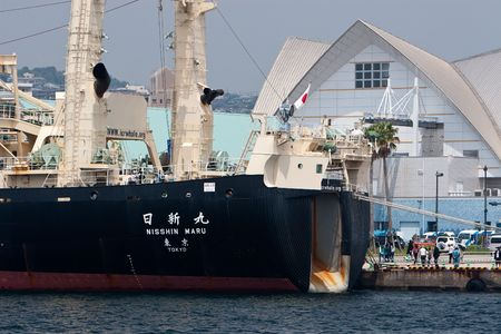 maru: Kagoshima City, Japan, April 27, 2008, The slipway of the whaling ship Nisshin Maru, berthed at a whaling festival in Kagoshima, Japan. The slipway is where whales are hauled onto the ship for processing. Editorial