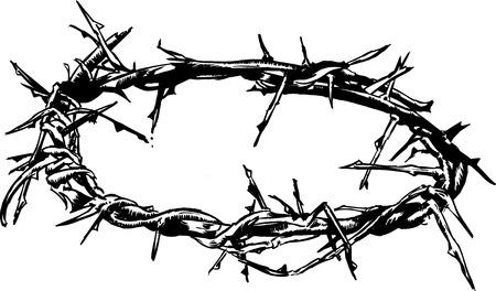 �pines: Crown of Thorns illustrations vectorielles � main lev�e avec plume et encre
