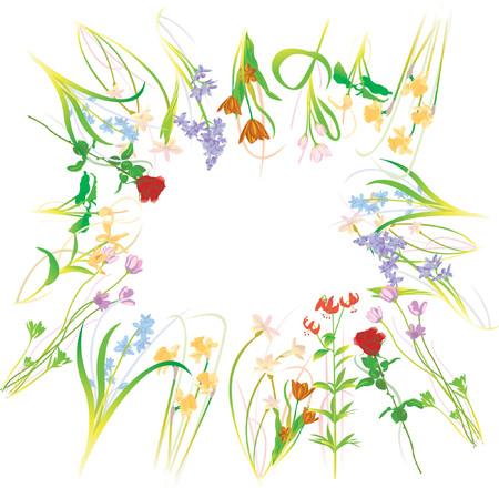 Flower Bundle Illustration - Vector