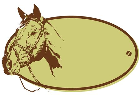 horse drawn: Horse Riding Club Style Banner Illustration, just add your name! Stock Photo