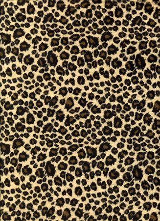 leopard print fabric texture Stock Photo