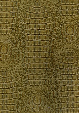 Reptile Skin Texture Background