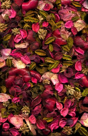 Dried flowers & Leaves background Texture photo