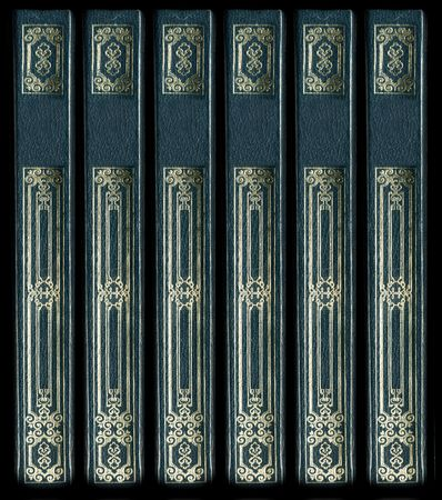 book spines: Old vintage leather book spines with gold decorative details. Matching leather textures and frames also available. Stock Photo