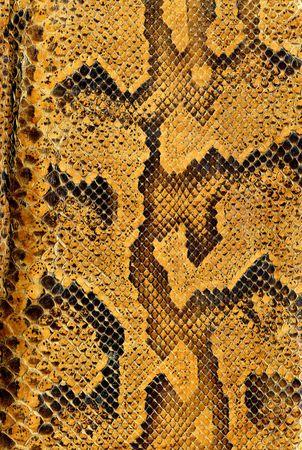 python: Snake skin background texture Stock Photo