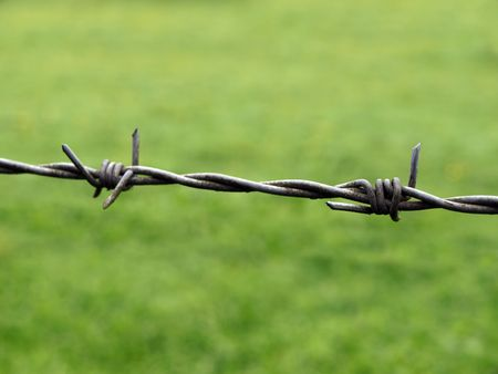 Section of barb wire against a green grass background photo