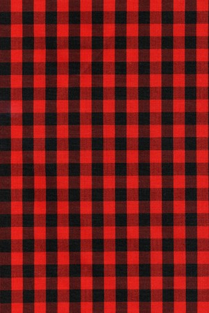 Red and black checkered fabric texture. View my full portfolio for similar images. Stock Photo - 4005914